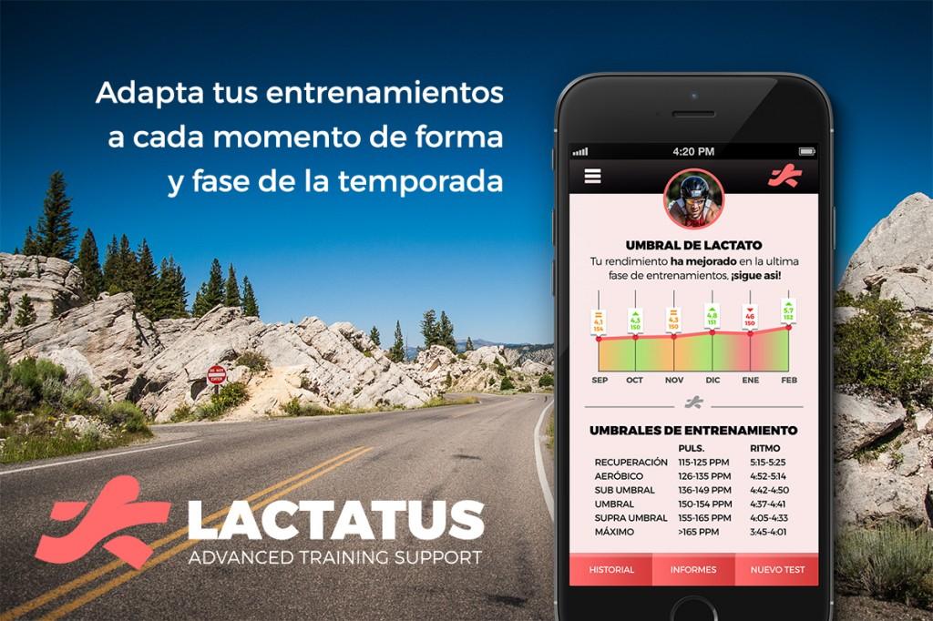 Lactatus
