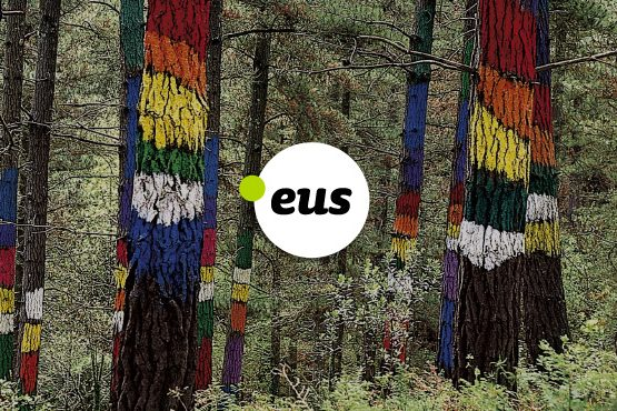 Dominios .EUS con Grupo Campus